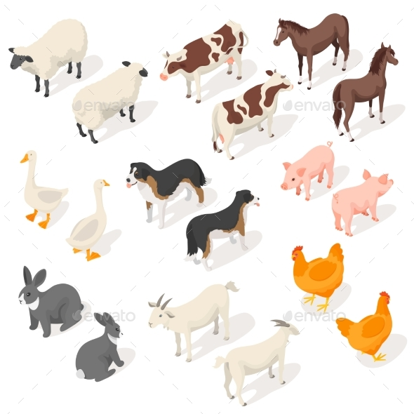 Isometric 3d Vector Set of Farm Animals - Animals Characters