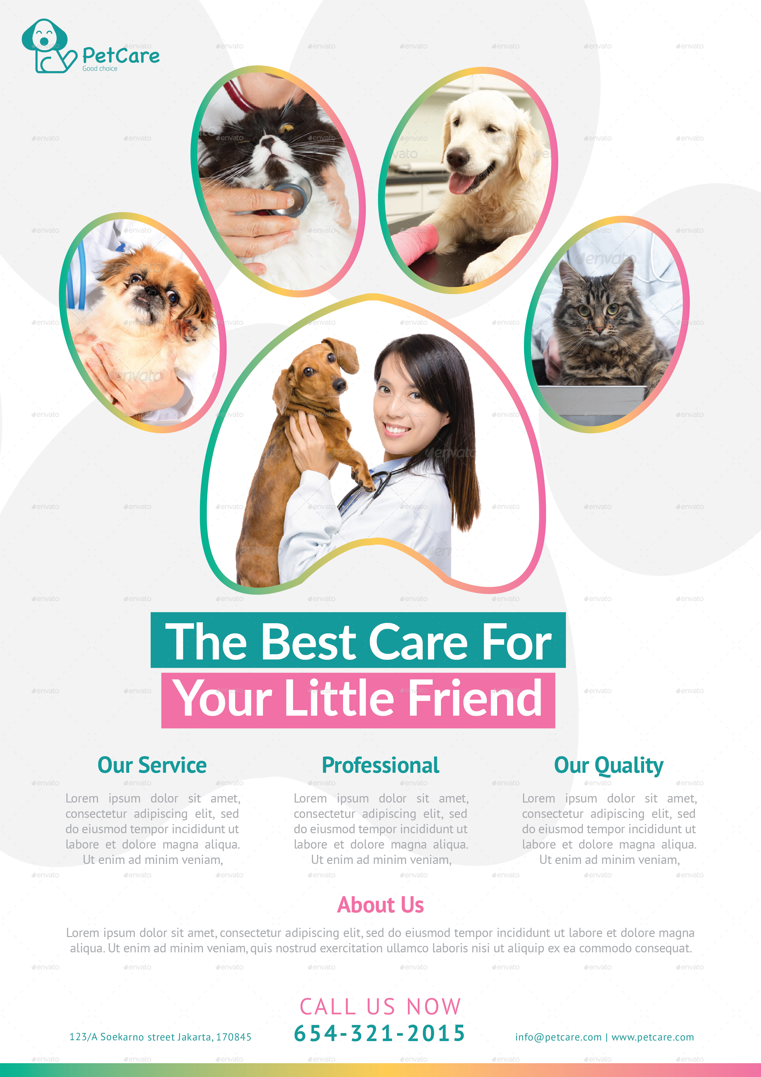 Follow the procedure, adopt a cat pet care video to listen to yourself