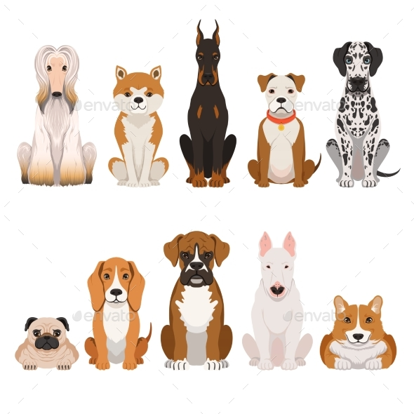 Funny Dogs Illustrations in Cartoon Style - Animals Characters