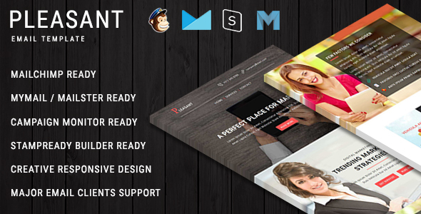 ThemeForest PLEASANT Multipurpose Responsive Email Template With Online StampReady Builder Access 20366001