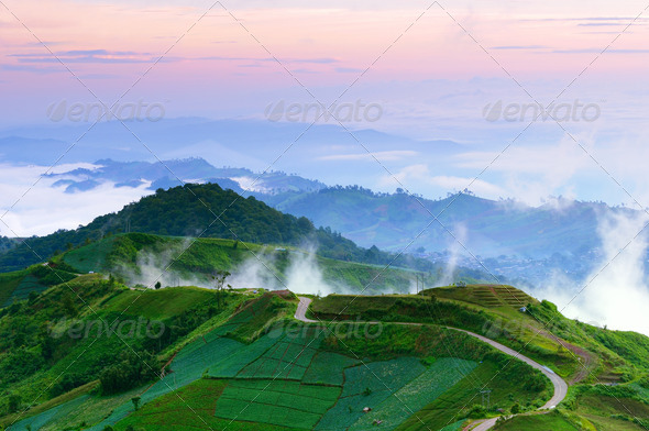Road to top of misty hill at dawn Thailand - Stock Photo - Images