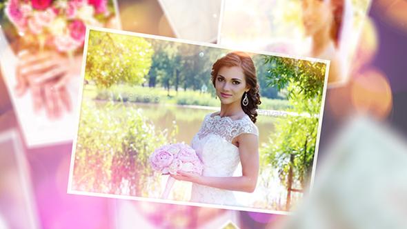 Wedding 20370616 Vip