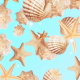 Starfish Background - VideoHive Item for Sale