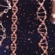 Spinning DNA Molecules and Floating Particles