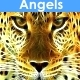 Choir Angel