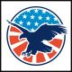 American Eagle Badge Logo