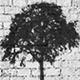 audio_tree