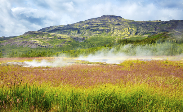 Colorful volcanic geyser landscape at Haukadalur geothermal area in Iceland - Stock Photo - Images