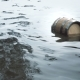 Barrel of Wood Floating on the Waves in the Sea