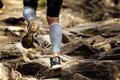 Athlete Runner Running Rocks in Mountain