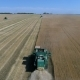Harvesting the Wheat Field with Agricultural Machinery. Aerial