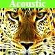 Acoustic Inspiring