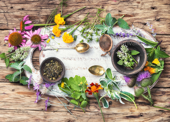 natural healthy herbs - Stock Photo - Images