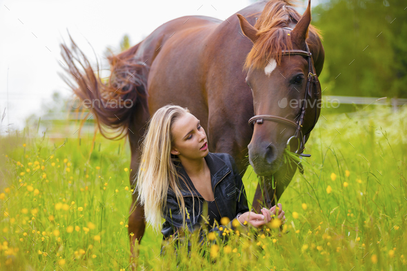 Beautiful woman feeding her arabian horse with snacks in the field - Stock Photo - Images