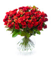 Bouquet of red roses in glass vase - PhotoDune Item for Sale