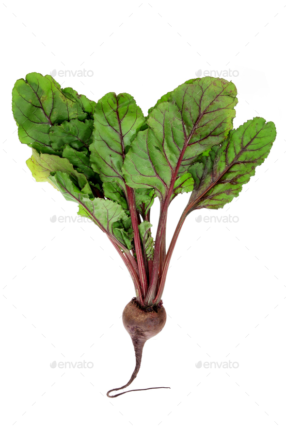 Beetroot - Stock Photo - Images