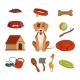 Different Accessories for Domestic Pet