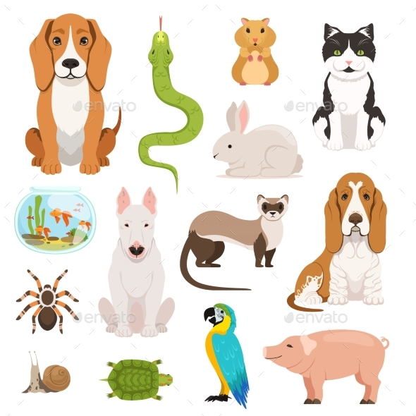 Big Vector Set of Different Domestic Animals. Cats - Animals Characters