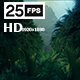 Jungle Palms HD - VideoHive Item for Sale