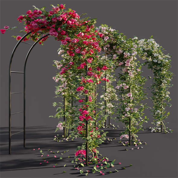 3DOcean Arch pergola with roses 20387940