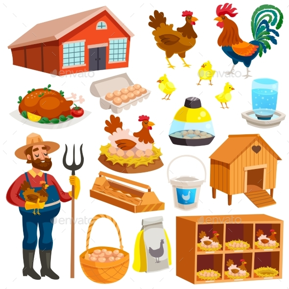 Poultry Farm Elements Set - Business Conceptual