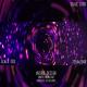 Free Download Purple Party Vortex Nulled
