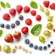 pattern of fresh berries - PhotoDune Item for Sale