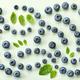 fresh blueberries on light green paper background - PhotoDune Item for Sale