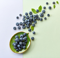blueberries on colorful paper background - PhotoDune Item for Sale