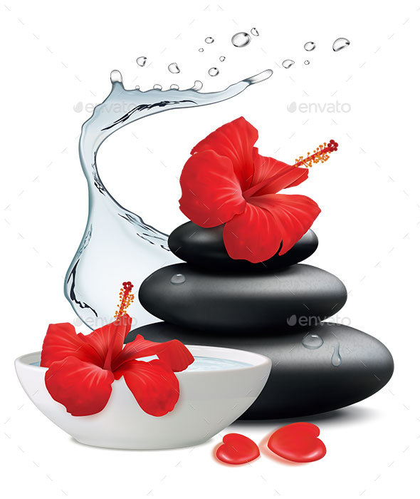 Hibiscus Flowers and Zen Stone, Bowl with Water on White Background. Vector Illustration - Health/Medicine Conceptual