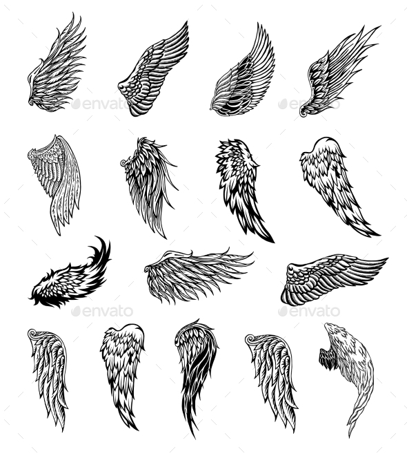 GraphicRiver Wings Graphic Illustration 20397604