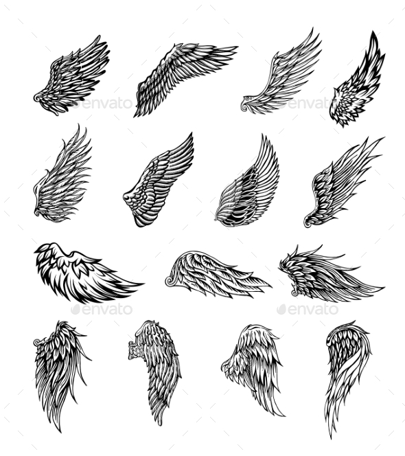 GraphicRiver Wings Graphic Illustration 20397611
