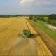 Combine Harvesting Wheat Field in Aerial View - VideoHive Item for Sale
