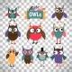 Owl Icons Set on Transparent Background