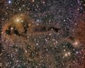 Dark Nebula LDN 1250 - PhotoDune Item for Sale
