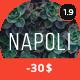 Napoli - Modern Photography Portfolio Theme - ThemeForest Item for Sale