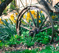 Vintage wooden wheel in the garden - PhotoDune Item for Sale