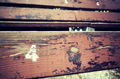 Number four painted on an old wooden seat. - PhotoDune Item for Sale