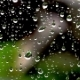 Drops of Rain on a Windowpane on the Background of a House - VideoHive Item for Sale