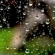Drops of Rain on the Glass on the Background of the House - VideoHive Item for Sale