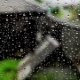 Drops of Rain on a Window on a Nature Background - VideoHive Item for Sale