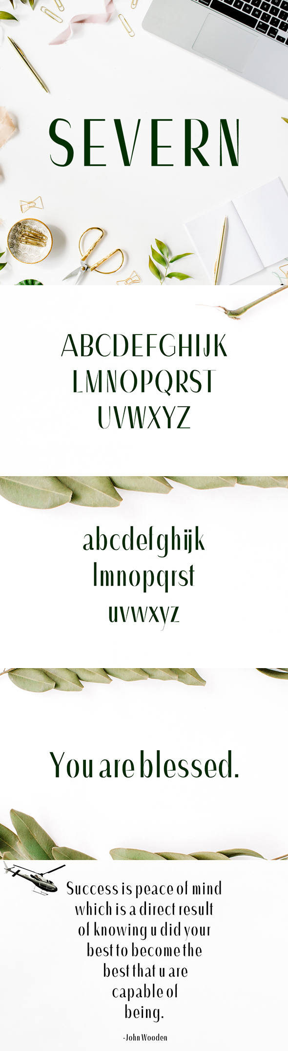 Severn Sans Serif Font Family - Sans-Serif Fonts