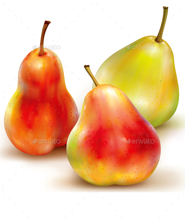 Three Vector of Pears on White Background - Food Objects