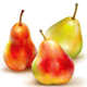 Three Vector of Pears on White Background