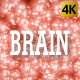Brain - VideoHive Item for Sale