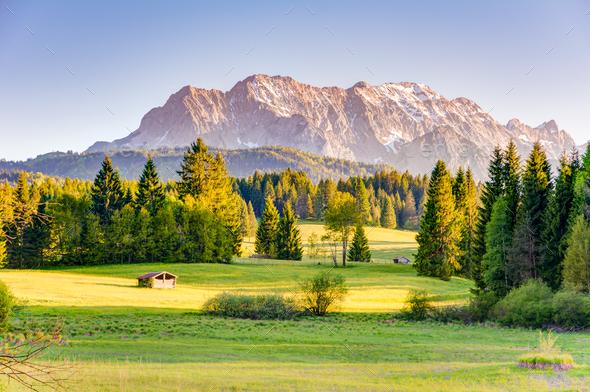 Pasture at the Karwendel mountains