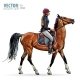 Horse with Rider. Jockey on Horse. Horse Riding - GraphicRiver Item for Sale