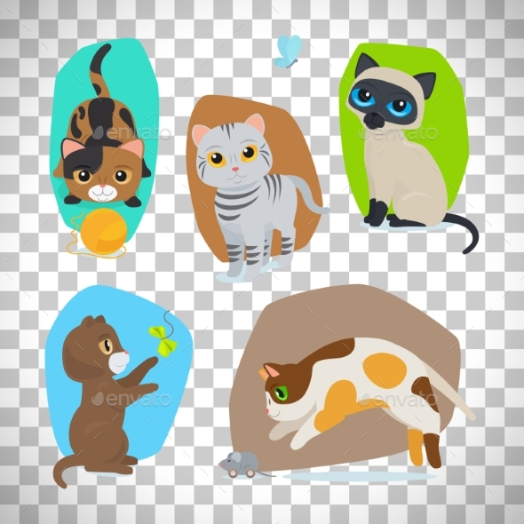 Cute Cats Set on Transparent Background - Animals Characters