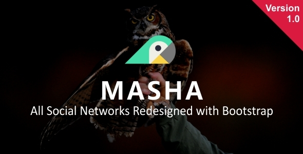 ThemeForest Masha All Social Networks Redesigned with Bootstrap 20281695