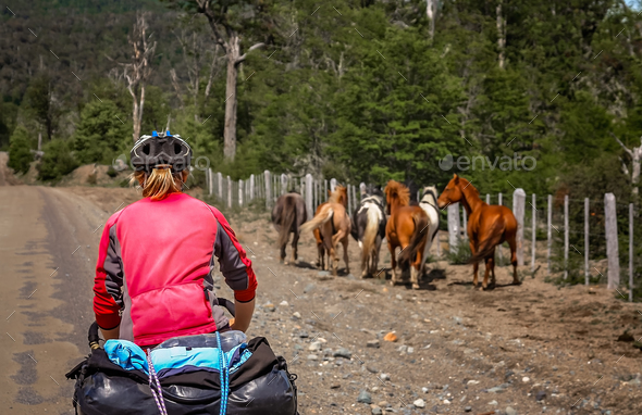 Cyclist chasing wild horses in Patagonia